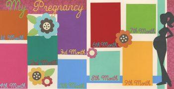 My Pregnancy Platinum Kit